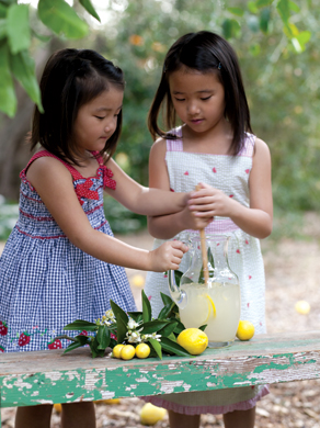 Children making lemonade